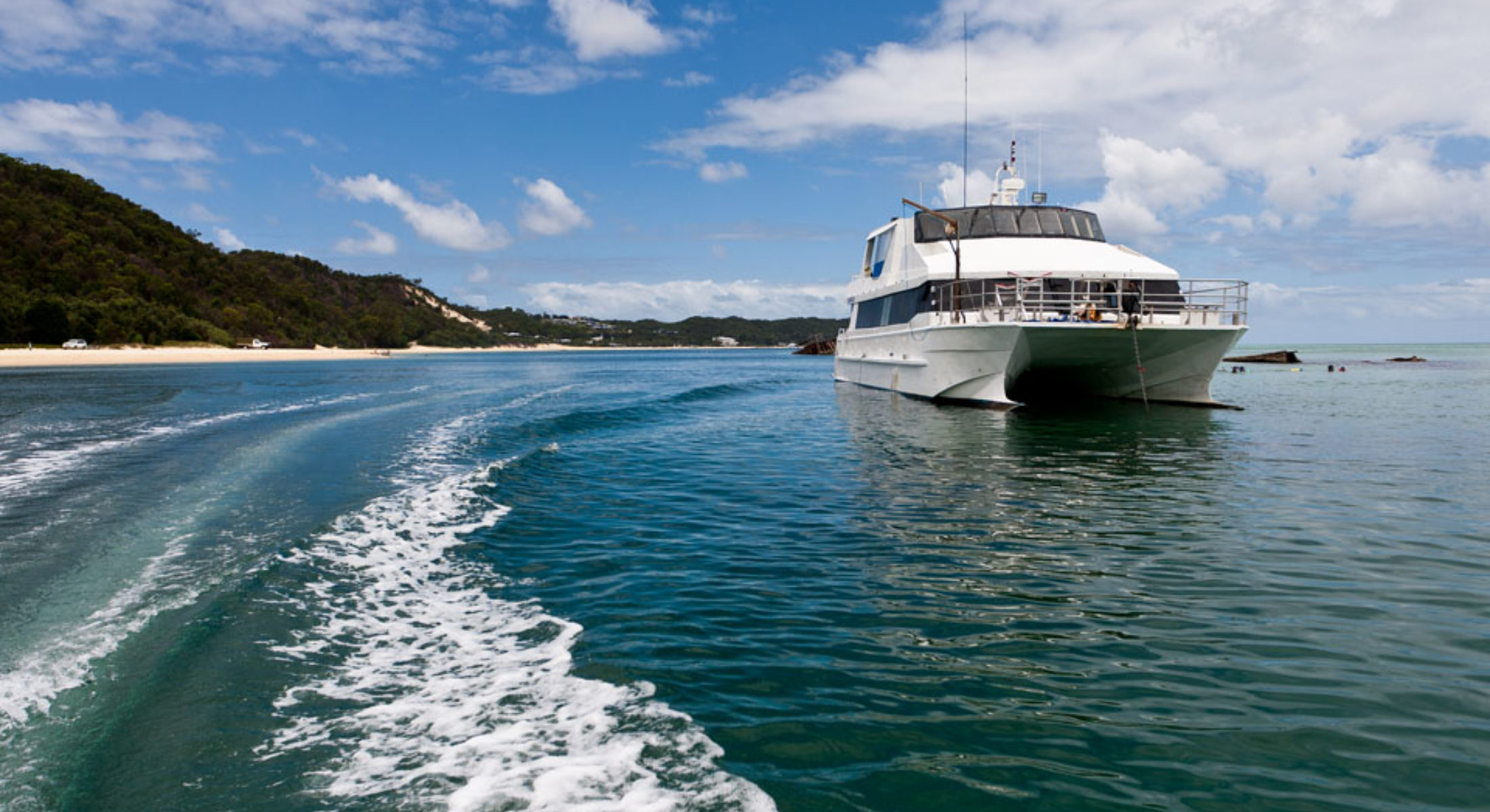 Dolphin Wild Tours Redcliffe Visit Moreton Bay Region Charter Vessel