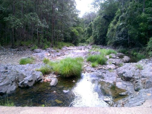 Story 3 Bellthorpe creek