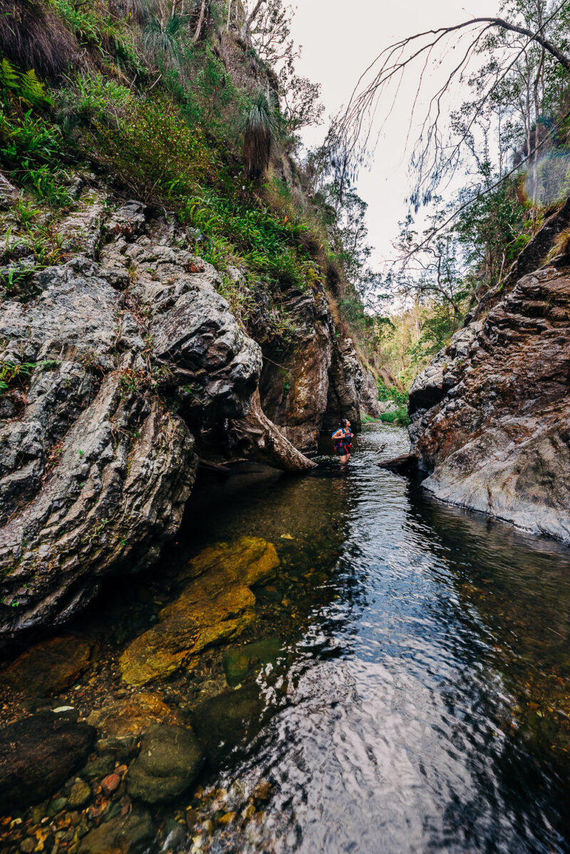 Northbrook Gorge Hike Moreton Bay Region credit Our Open Passport
