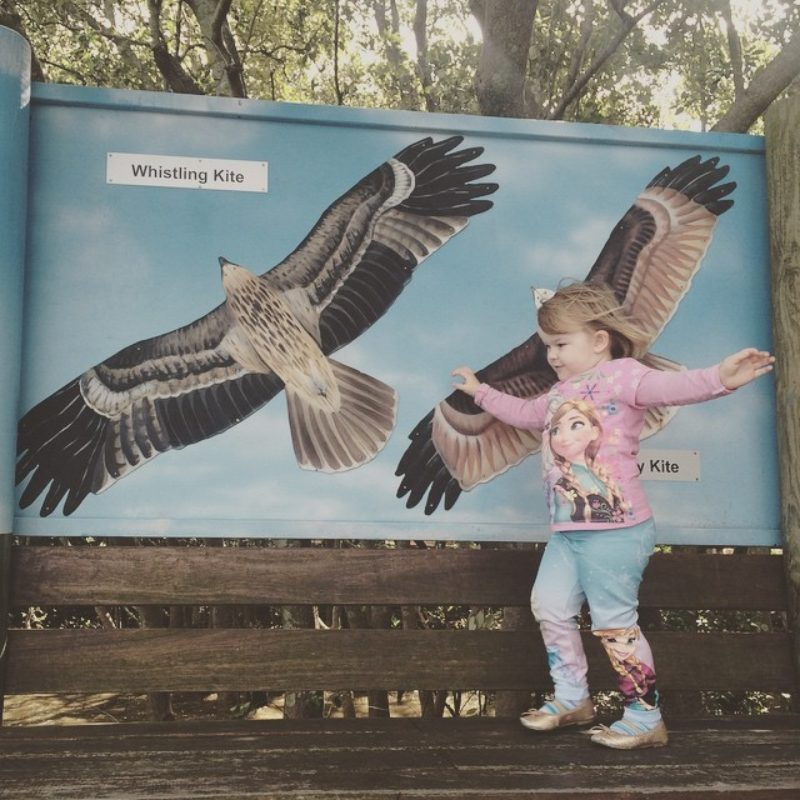 Osprey House Environmental Centre Visit Moreton Bay Region Family Fun credit mama of the rainbow