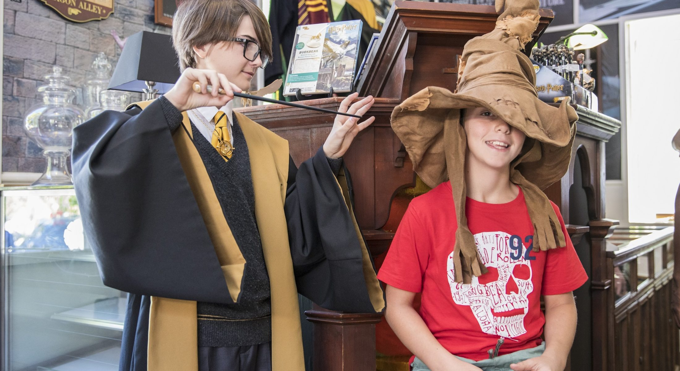 Harry Potter The Store Of Requirement Samford Sorting Hat Visit Moreton Bay Region